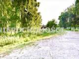 teren inwestycyjny - Koluszki