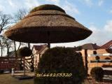 Wyroby ze strzechy PRODUCENT ( parasole, meble ogrodowe )