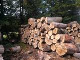 drewno opalowe kominkowe buk swierk