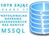 Skuteczna naprawa baz danych SQL trudne przypadki /  Naprawa bazy danych MSSQL, baz Płatnika, Wapro,